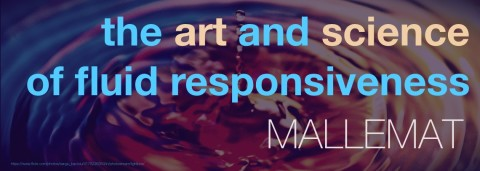 Haney Mallemat – The Art and Science of Fluid Responsiveness