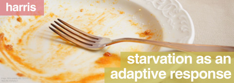 starvation as an adaptive response by harris