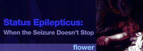 STATUS EPILEPTICUS: WHEN THE SEIZURE DOESN'T STOP – OLI FLOWER
