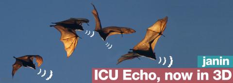 icu echo, now in 3d – by janin