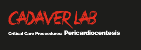 Critical Care Procedures: Pericardiocentesis