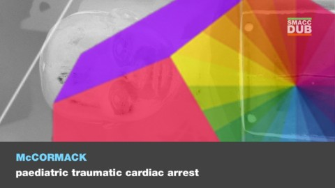Paediatric traumatic cardiac arrest