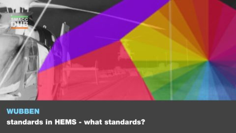 Standards in HEMS. What standards?